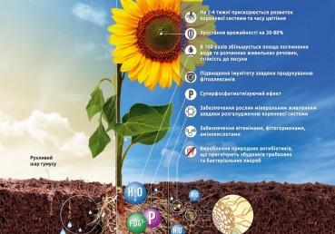 Унікальний мікоризний інокулянт Mycofix - тепер в Україні