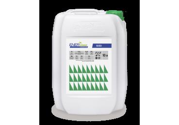Energreen Premium  Seed